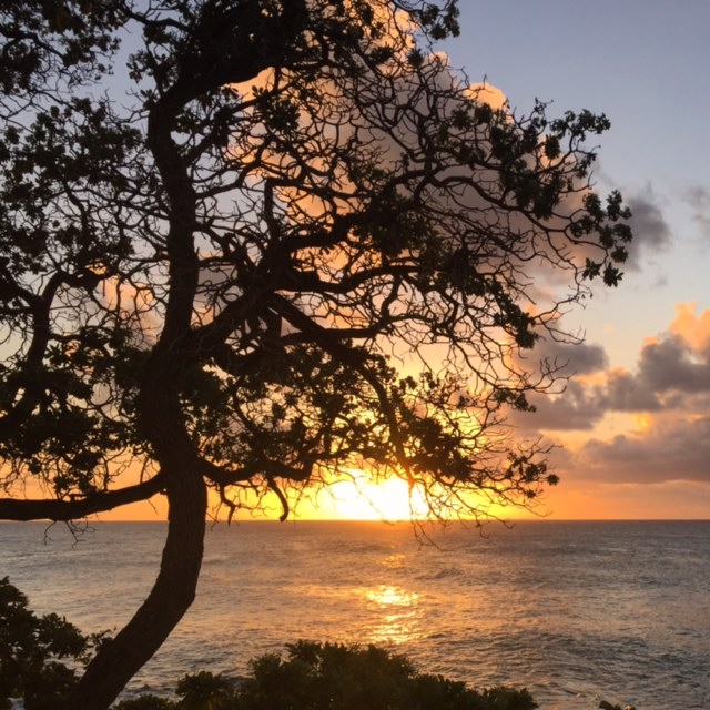 Sunset Turtle Bay