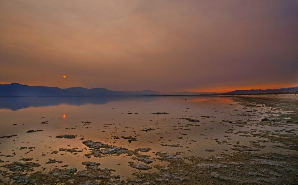 Salton Sea by Will Potter