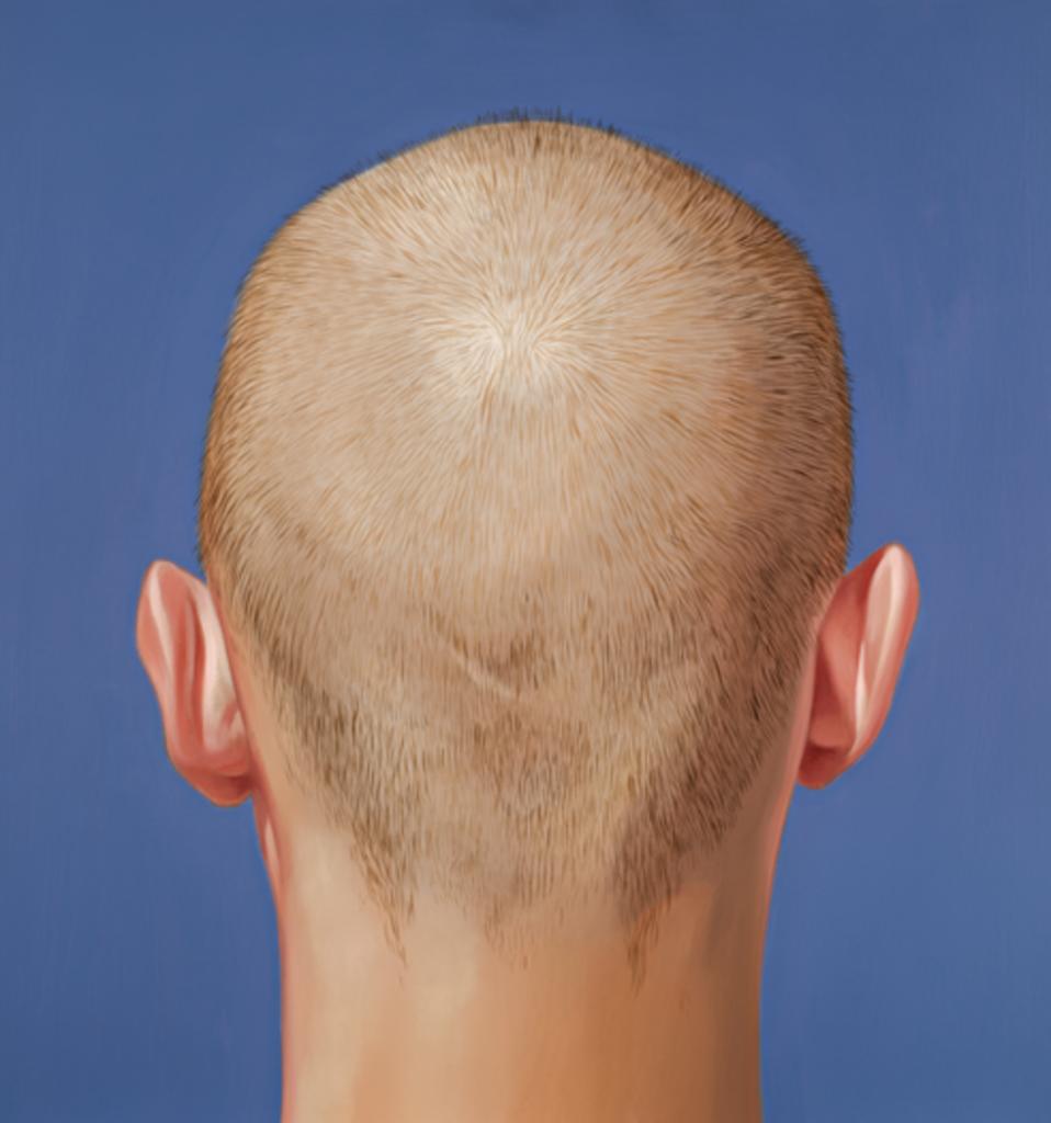 Cabeza / Back of Head