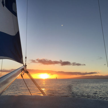 Sailing of Waikiki by Ron Braverman